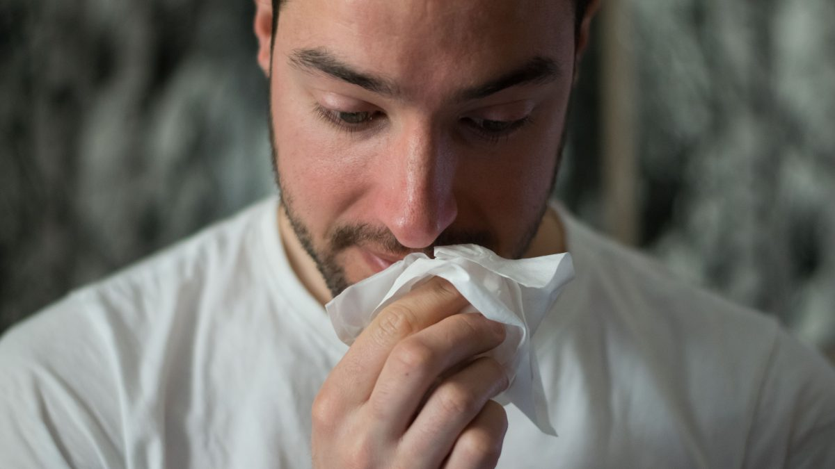 allergies or common colds the differrences