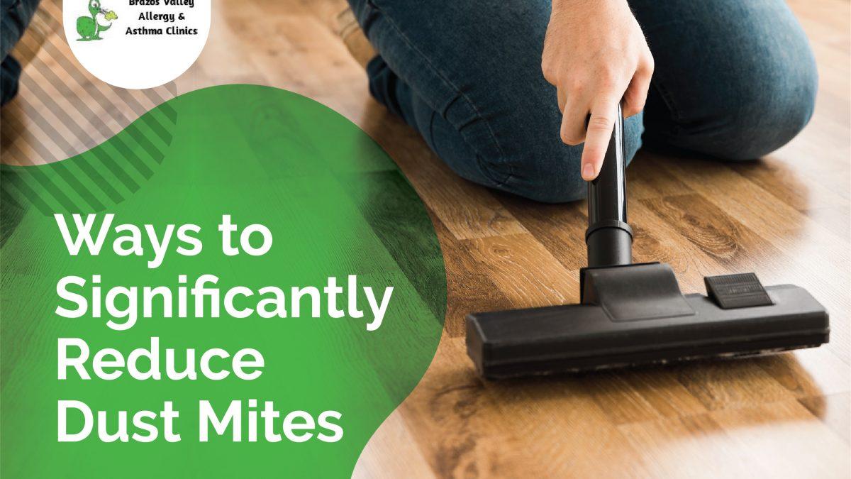 dust mites allergy prevention