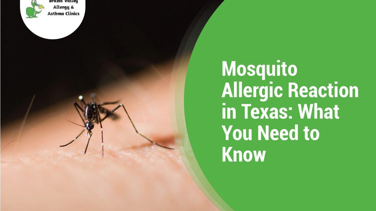 Mosquito Allergic Reaction